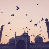 Jama Masjid. Professionelle Fotografie mit dem iPhone.