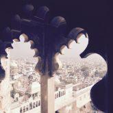 professionelle Fotografie mit dem iPhone auf Reisen