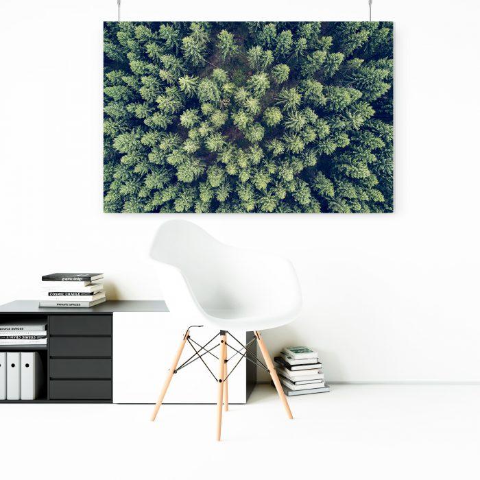 Wandbild: Wald von Oben 1