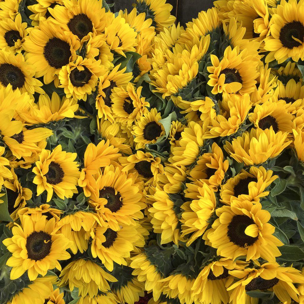 Blumen am Wochenmarkt