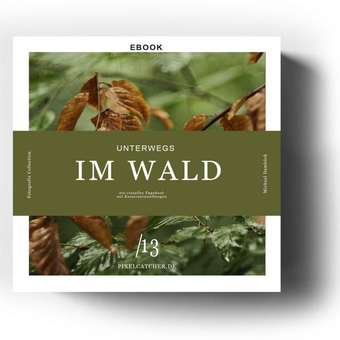 ebook: Unterwegs im Wald 1