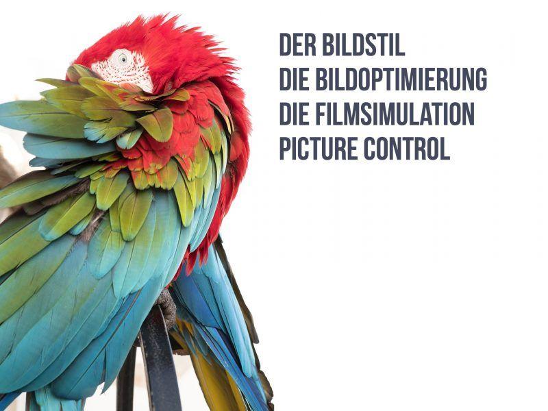 Fotografieren Lernen: Grundlagen der Fotografie Videokurs 6